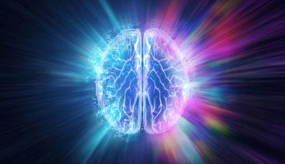cibi che aiutano il cervello