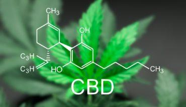 effetti-benefici-cannabis-cbd